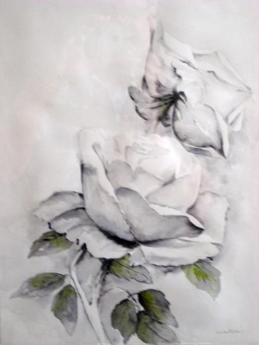 003  Rosa  amore e mistero