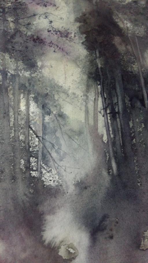 Giovanna Paganin - Nebbia nel bosco