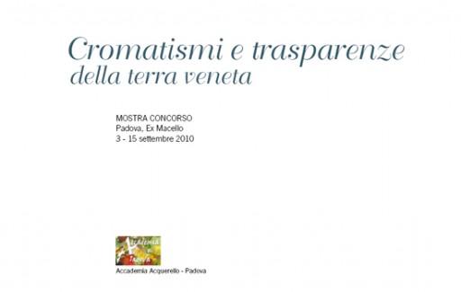 concorso-2010